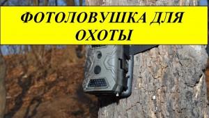 Фотоловушки для охоты, как выбрать нужное?
