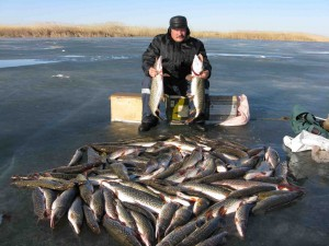 Какой выбрать подарок заядлому рыбаку
