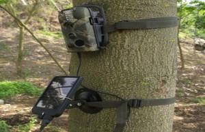 Фотоловушка охотника