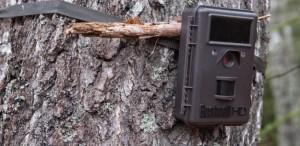 Видеоловушка для охраны дома или приусадебного участка
